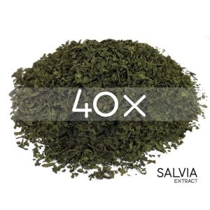 SalviaExtract 40x