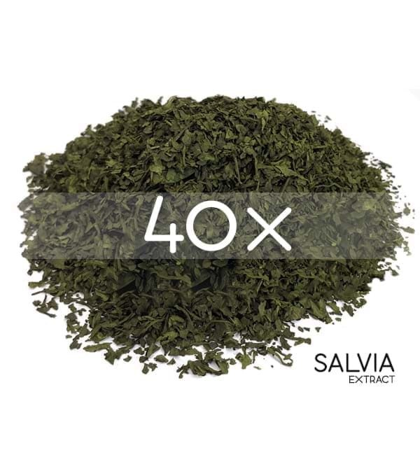 SalviaExtract 40x